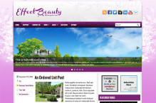 effectbeauty-wordpress-theme