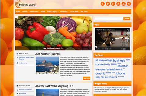 healthyliving-wordpress-theme