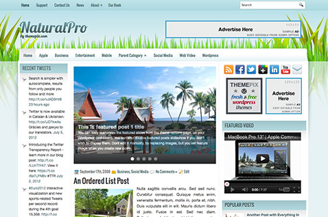naturalpro-wordpress-theme